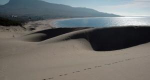 Playa de Bolonia, Tarifa