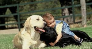 El primer perro